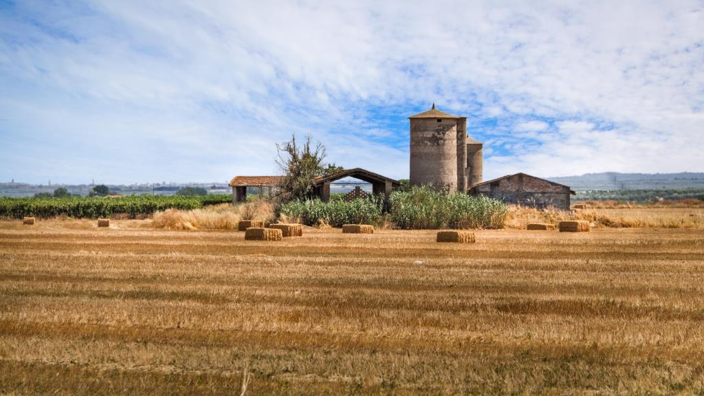 Casale-rurale-trinitapoli