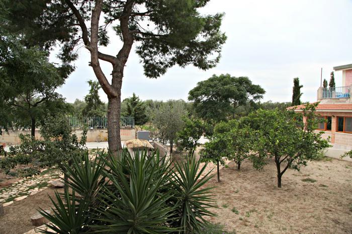 Agriturismo e Azienda Agricola Il Mulino Trinitapoli Puglia