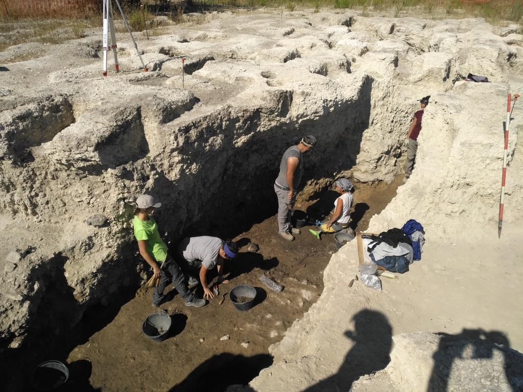 Ipogei di Trinitapoli, Archeologi a lavoro