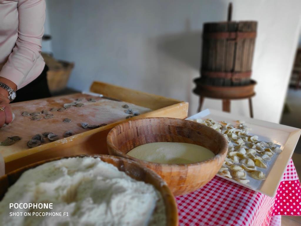 Vivi un giorno da Massaio in Puglia Trinitapoli