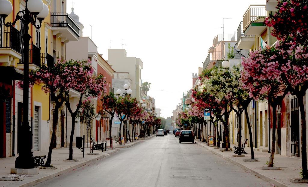strade-diorite-del-borgo-trinitapoli