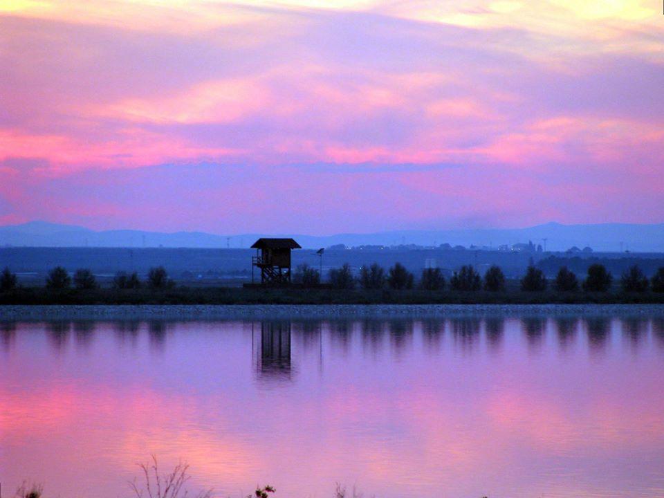 tramonto-birdwatching-salina-trinitapoli-foto-di-peppino-lupo
