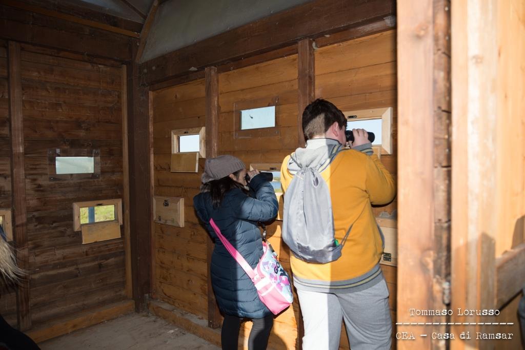Centro di educazione ambientale Casa di Ramsar Zona Umida Trinitapoli Birdwatching